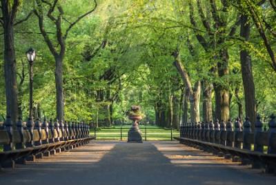 Fototapeta Park Centralny. Obraz centrum handlowego w Central Parku w Nowym Jorku, USA