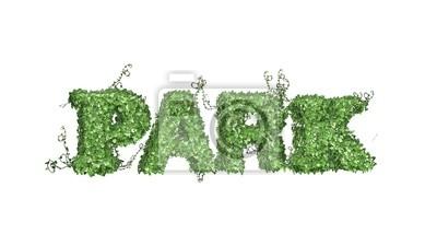 Fototapeta park - logo z liści bluszczu - rozdzielone na białym BG