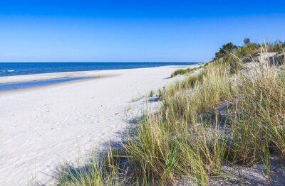 Fototapeta Piaszczysta plaża na Półwyspie Helskim, Morze Bałtyckie, Polska