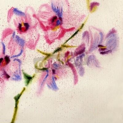 Fototapeta Piękna akwarela orchidea