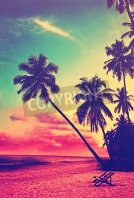 Fototapeta Piękna tropikalna plaża z sylwetką palmy o zachodzie słońca