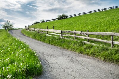 Fototapeta Piękna zielona łąka na lato. Krajobraz przyrody