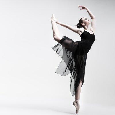 Fototapeta Piękne baletnik stwarzających na tle studio