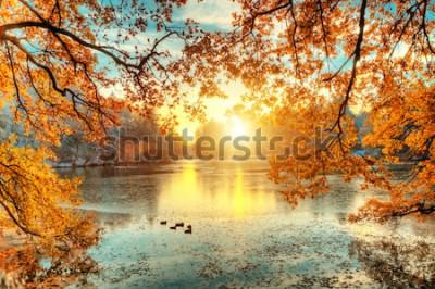 Fototapeta Piękne kolorowe drzewa z jeziorem jesienią, fotografia krajobrazowa. Późna jesień i wczesna zima. Outdoor i przyroda.