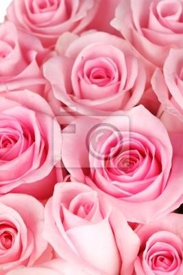 Fototapeta piękne róże