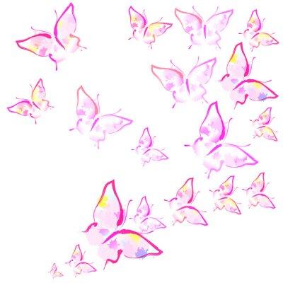 Fototapeta piękne różowe motyle, odizolowane na białym