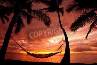 Fototapeta Piękne Wakacje Zachód słońca, Hammock Silhouette z palmami