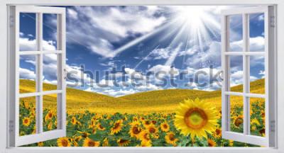Fototapeta Piękny letni krajobraz, widok okna