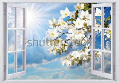 Fototapeta Piękny widok z okna