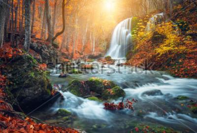 Fototapeta Piękny wodospad na górskiej rzece w kolorowy jesień las z czerwonymi i pomarańczowymi liśćmi o zachodzie słońca. Krajobraz przyrody