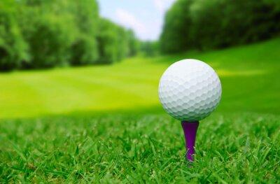 Fototapeta Piłeczka golfowa na kurs