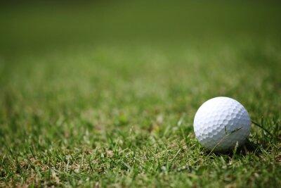 Fototapeta Piłeczka golfowa w trawie