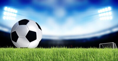 Fototapeta Piłka nożna Sport