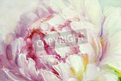 Fototapeta Pink and white peony background. Oil painting floral texture