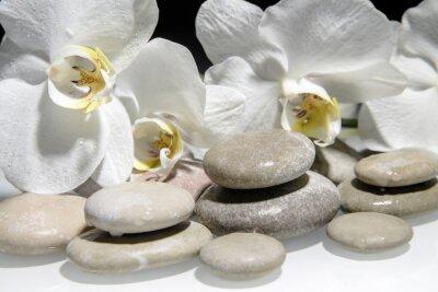 Fototapeta Płaskie kamienie na białym szkła na tle białego storczyków