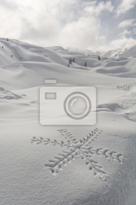 Fototapeta Płatek śniegu na śniegu