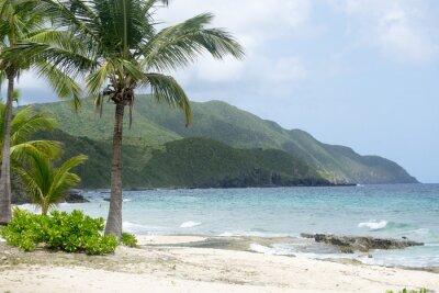 Fototapeta Plaża i góry w St. Croix