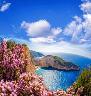 Fototapeta Plaża Navagio z morskiej i kwiaty przeciw błękitne niebo na wyspie Zakynthos, Grecja