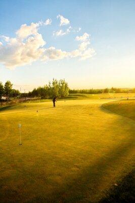 Fototapeta pola golfowe