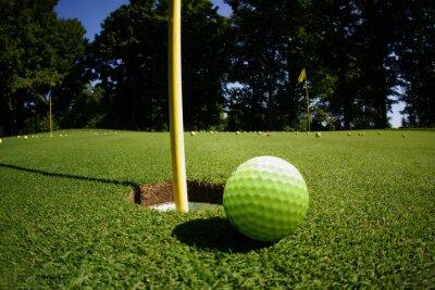 Fototapeta Pole golfowe