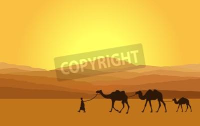 Fototapeta Pole z wielbłądów w pustyni z górami w tle. ilustracji wektorowych
