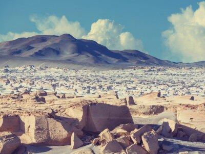 Fototapeta Północna Argentyna