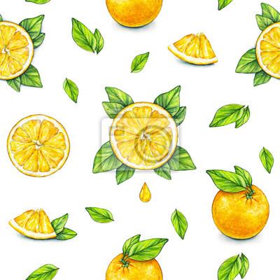 Fototapeta Pomaranczowy Dojrzalych Owocow Z Zielonymi Liscmi Rysunek Akwarela