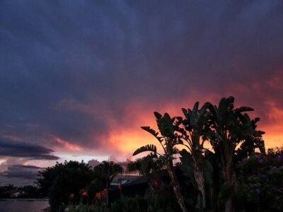 Fototapeta Pomarańczowy i różowy zachód słońca w tropikalnych Raj na Florydzie