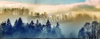 Fototapeta Porannej mgły i lasu