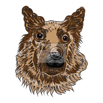 Portret Owczarek Niemiecki Puppy Ręcznie Rysowany Pies Ilustracji