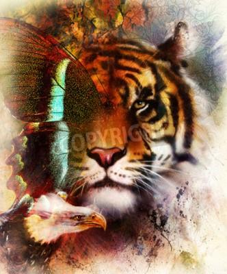 Fototapeta Portret tygrys z orłem i skrzydeł motyla .. Streszczenie kolor t? a ozdoba, rocznik struktury. koncepcja zwierząt