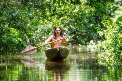 Fototapeta Pozyskanie drewna Canoe