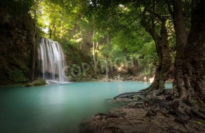 Fototapeta promienie światła słonecznego i promieni blask poprzez liści drzew w parku tropikalnych lasów tropikalnych w Tajlandii z piękny wodospad wchodzących w czystej staw i stary wielkie drzewo na pierwszym