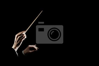 Fototapeta Prowadzenie dyrygentury orkiestry. Ręce dyrygenta z batutą