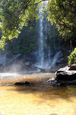 Fototapeta Przypada na terenie parku narodowego, Kambodży