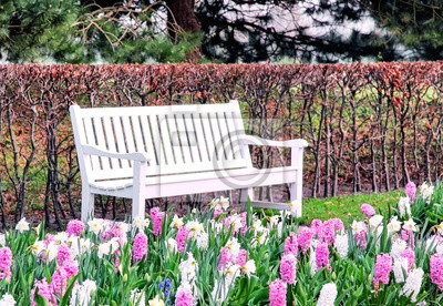 Pusta biała ławka w wiosna parku