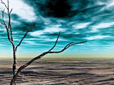 Pustynia Namib 5