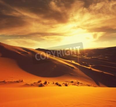 Fototapeta Pustynia Sahara