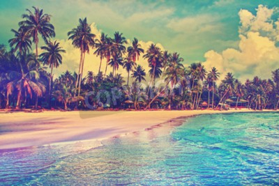 Fototapeta Raj przyroda, morze hotel i dom na tropikalnej plaży.