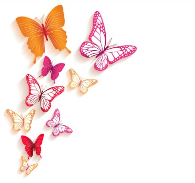 Fototapeta Realistyczne Kolorowe Motyle samodzielnie na wiosnę