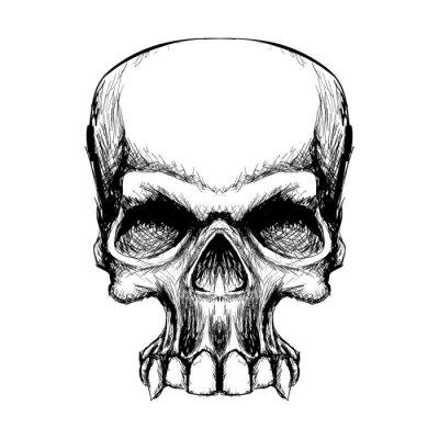 Fototapeta Ręcznie Narysować Czaszki Halloween Horror śmierć Symbol Tatuaż