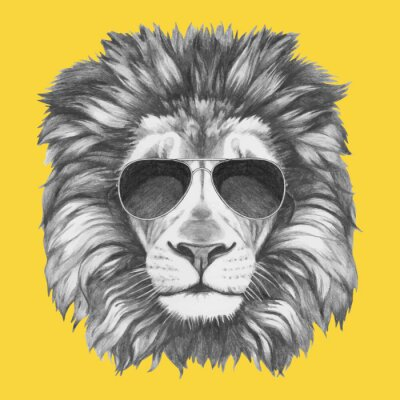 Fototapeta Ręcznie rysowany portret Lwa z okulary. Vector pojedyncze elementy.