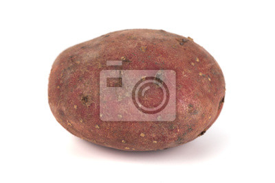 Fototapeta red sweet large potato close up isolated on white background