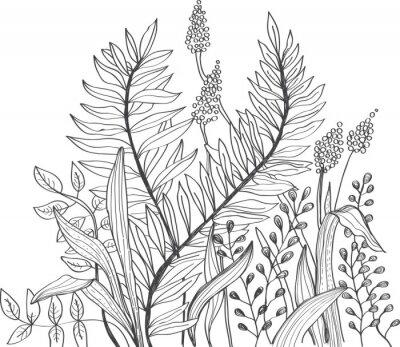 Fototapeta Romantyczny doodle kwiat tle
