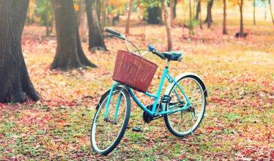 Fototapeta Rower dla podróży wypoczynkowych. (Focus w koszu) rocznika retro tonu