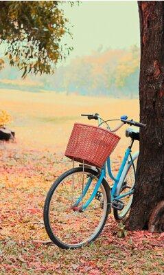 Fototapeta Rower dla podróży wypoczynkowych. (Focus w koszu) Vintage retro ton