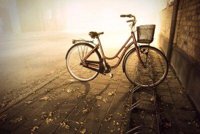 Fototapeta Rower jesienią