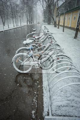 Fototapeta Rowery gładko pokryte świeżym śniegiem po zjawiskach pogodowych - opady śniegu pod koniec kwietnia pod Moskwą