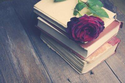Fototapeta róża na książki