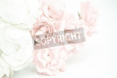 Fototapeta Róże słodkie kolor w miękkich i rozmycie stylu na tekstury papieru morwa